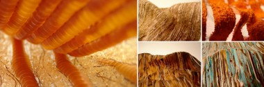 Close-ups of various materials in the colours of orange, copper and turqouise.