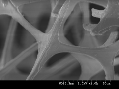 Close-up in black-and white of a cell-structure, lika a old school photo negative